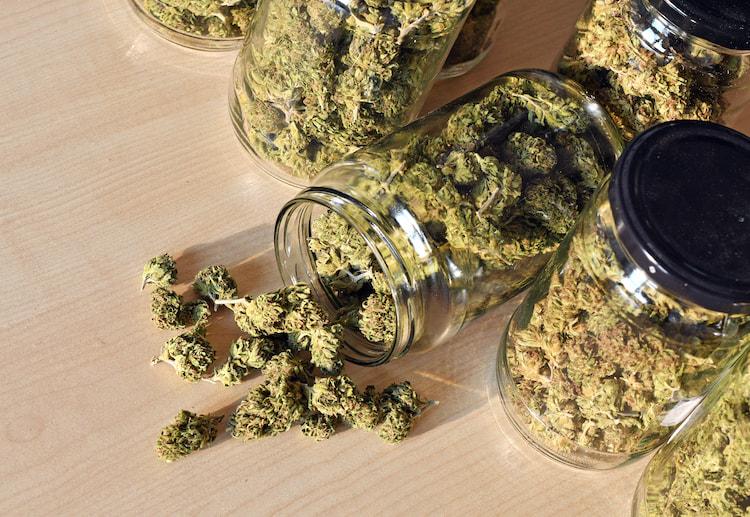 should teens smoke marijuana