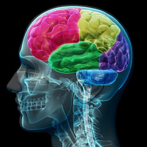 how neurofeedback works
