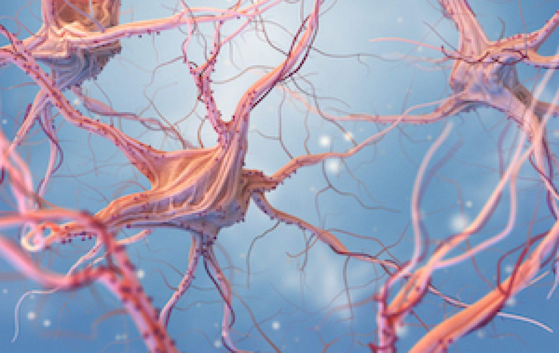 neurons firing in a brain